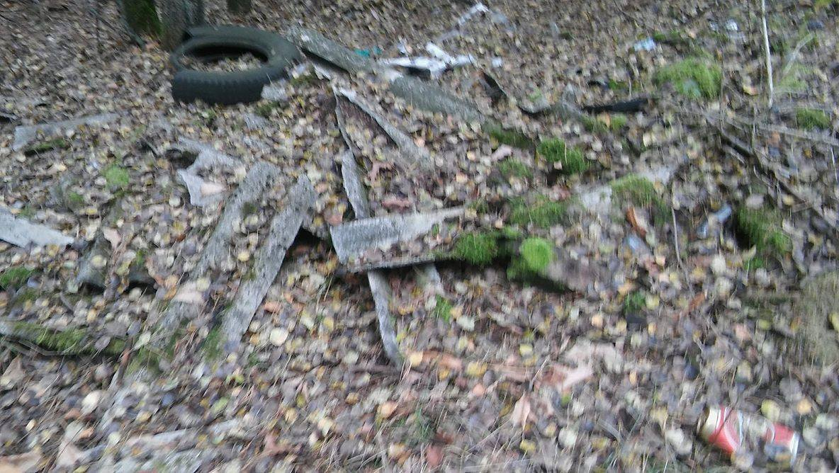 W lesie nie brak eternitu, opon i innych niechcianych w gospodarstwach przedmiotów...